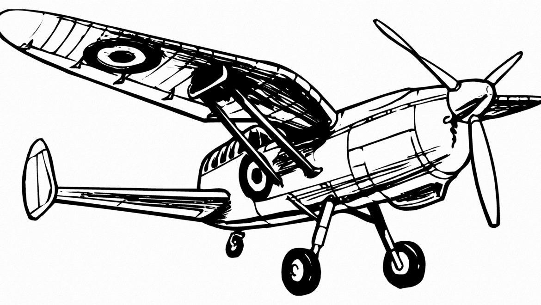 סיפור המטוס המצרי של מבריח החשיש